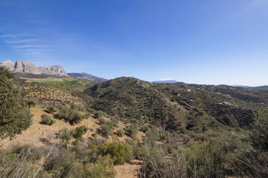 27. 20HC009 - Views towards the mountains 1.1 (Copiar)
