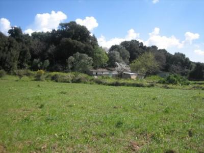 313685 - Plot For sale in Artà, Mallorca, Baleares, Spain