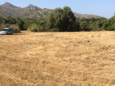 789522 - Rustic Finca For sale in Capdepera, Mallorca, Baleares, Spain