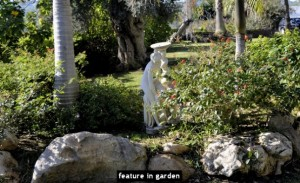 feature in garden
