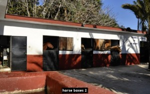 horse boxes 2