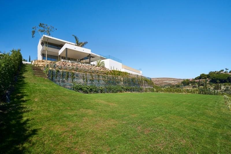Garden with huge grass meadow