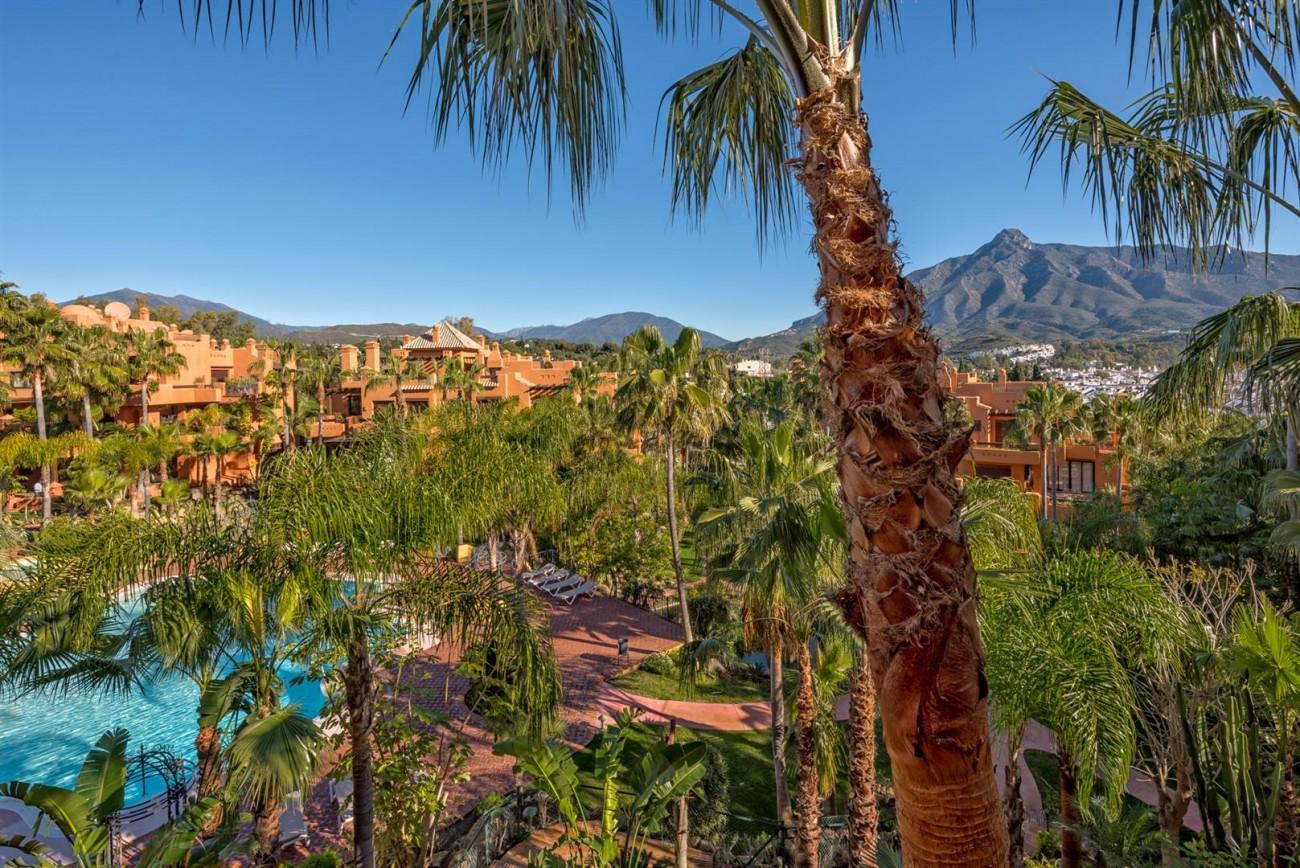 Luxury Apartments close to Puerto Banus Marbella Spain (4) (Large)