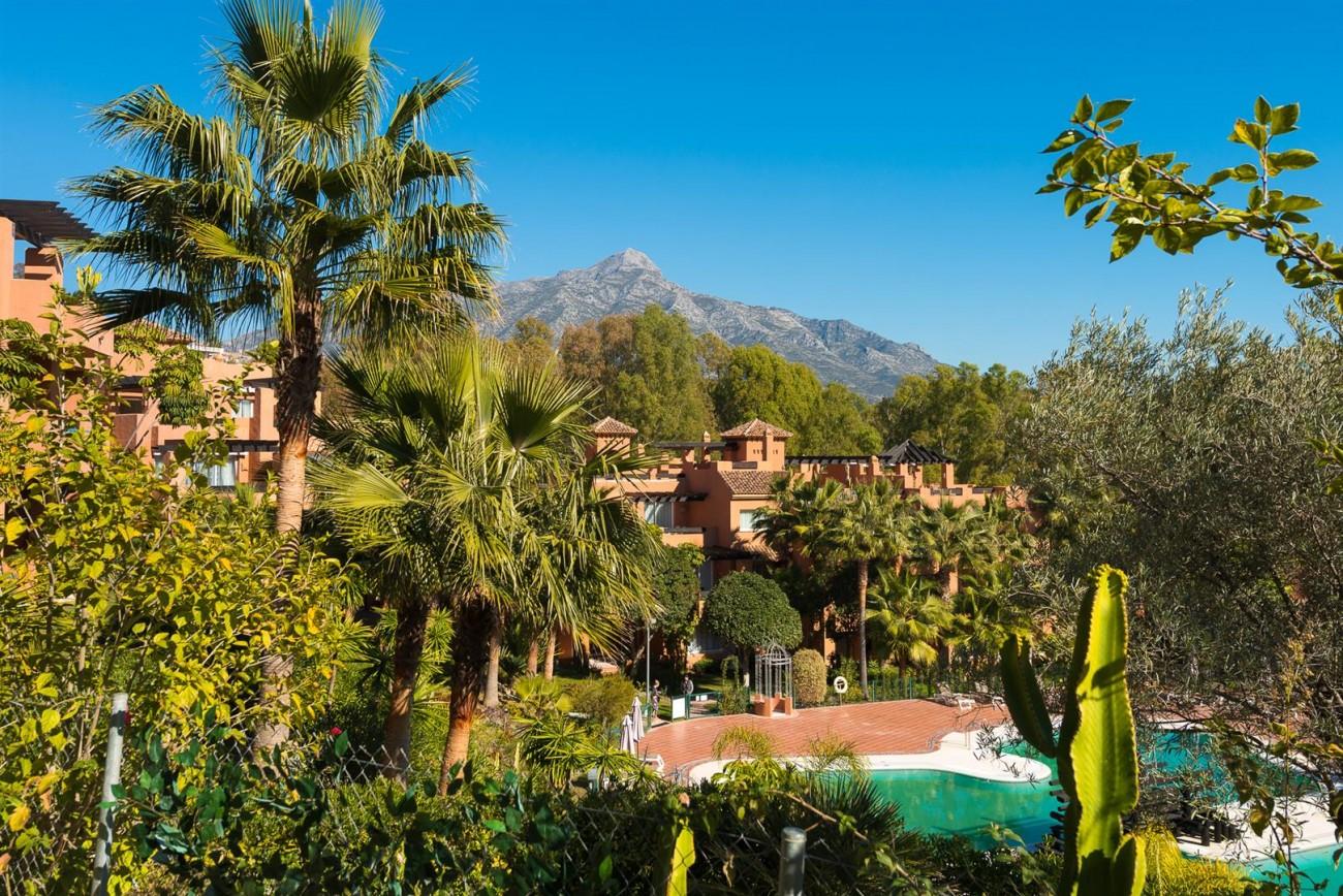 New Development Apartments Nueva Andalucia Marbella Spain (18) (Large)