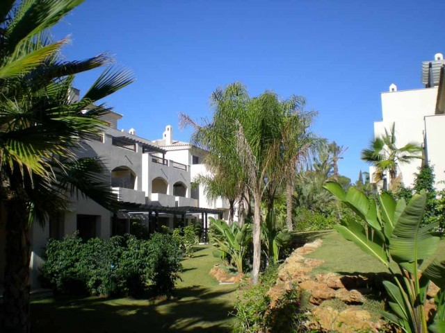 New Development for Rent - 750€/month - Nueva Andalucía, Costa del Sol - Ref: 2821