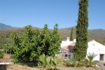 385833 - Finca for sale in Estepona, Málaga, Spain