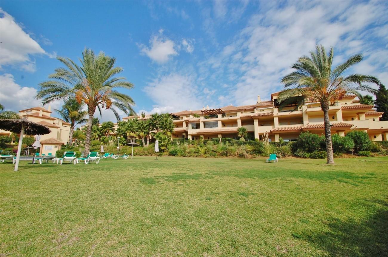 A3604 Beautiful Apartment in Nueva Andalucia Marbella (10) (Large)