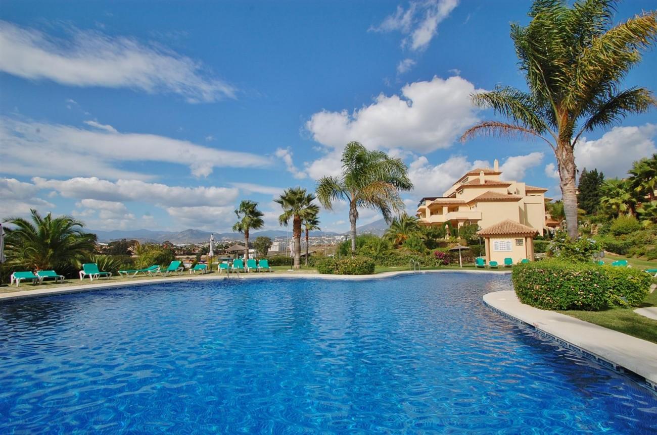 A3604 Beautiful Apartment in Nueva Andalucia Marbella (11) (Large)