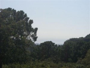 448434 - Plot For sale in La Zagaleta, Benahavís, Málaga, Spain