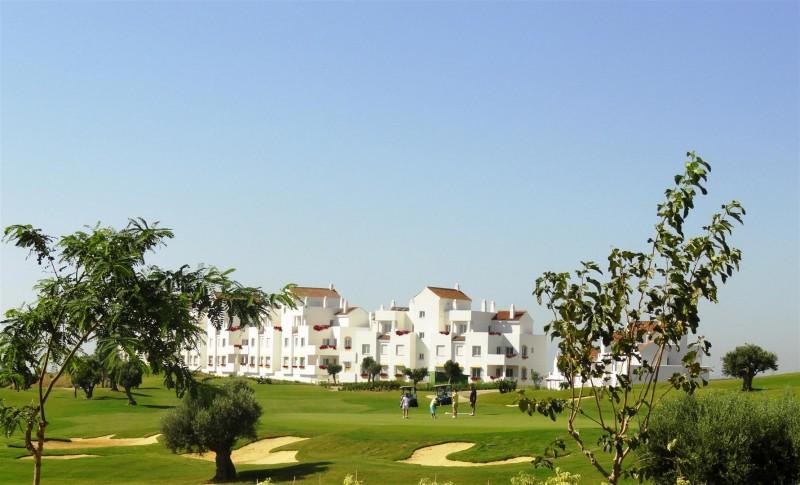 New Apartments West of Estepona Malaga Spain (8) (Large)