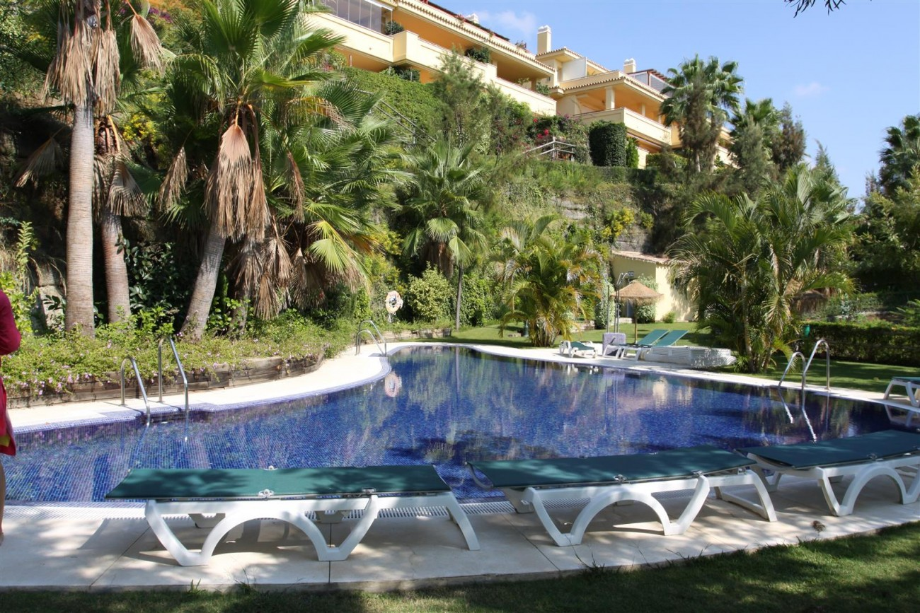 Luxury Apartment for sale Marbella Spain (2) (Large)