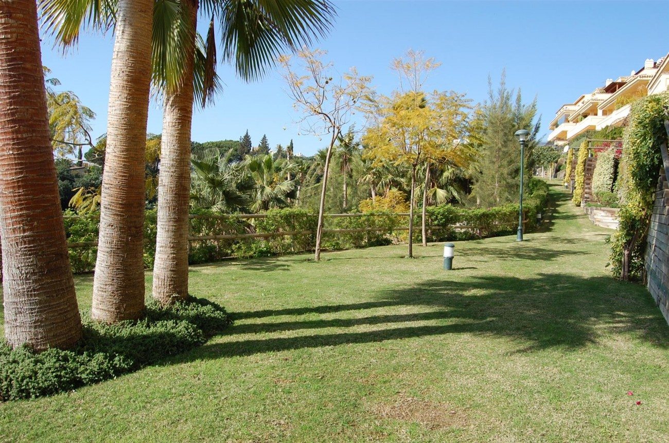 Luxury Apartment for sale Marbella Spain (3) (Large)