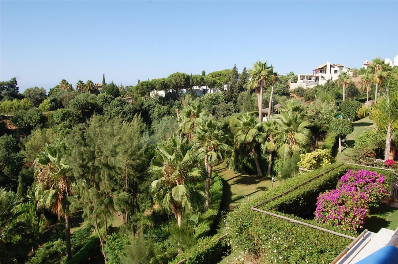 Luxury Apartment for sale Marbella Spain (5) (Large)