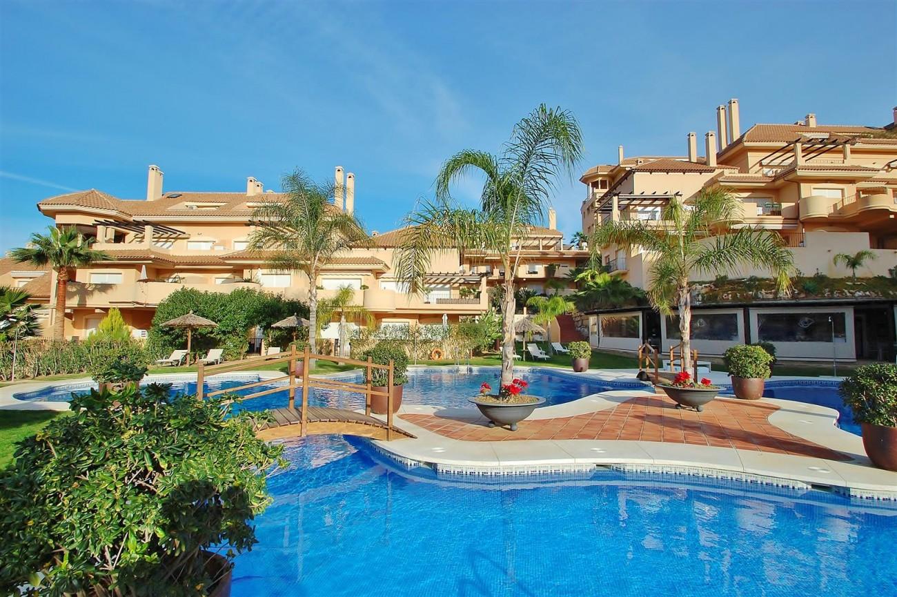 A5537 Apartment Nueva Andalucia 1 (Large)