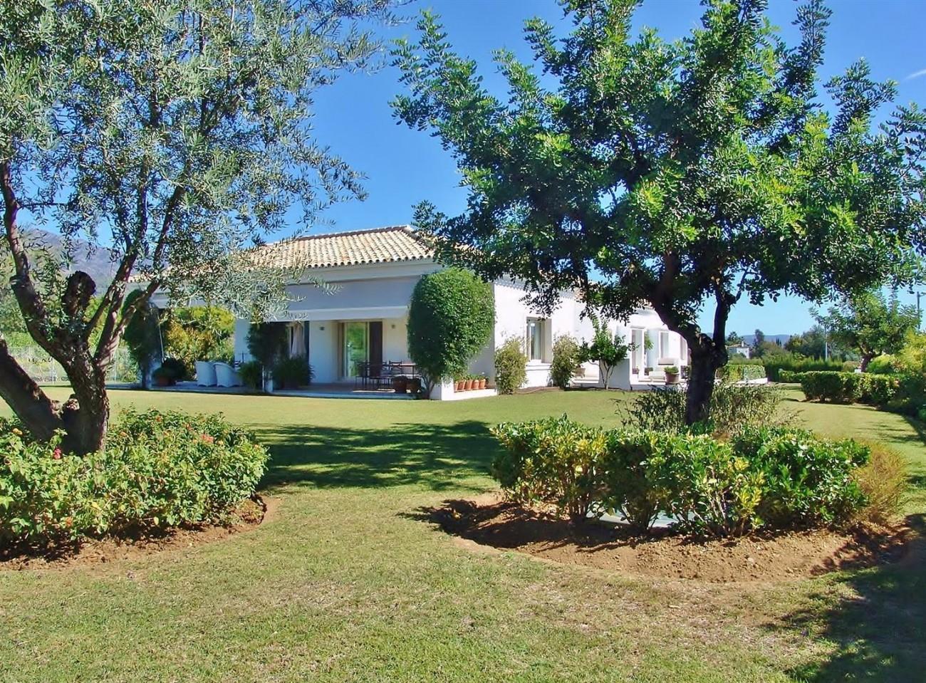 Contemporary Villa in Marbella Golden Mile (20) (Large)
