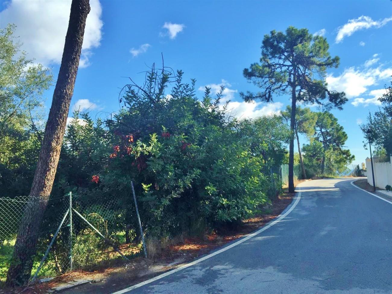 P5185 Plot Cascadas de Camojan Marbella  (10)