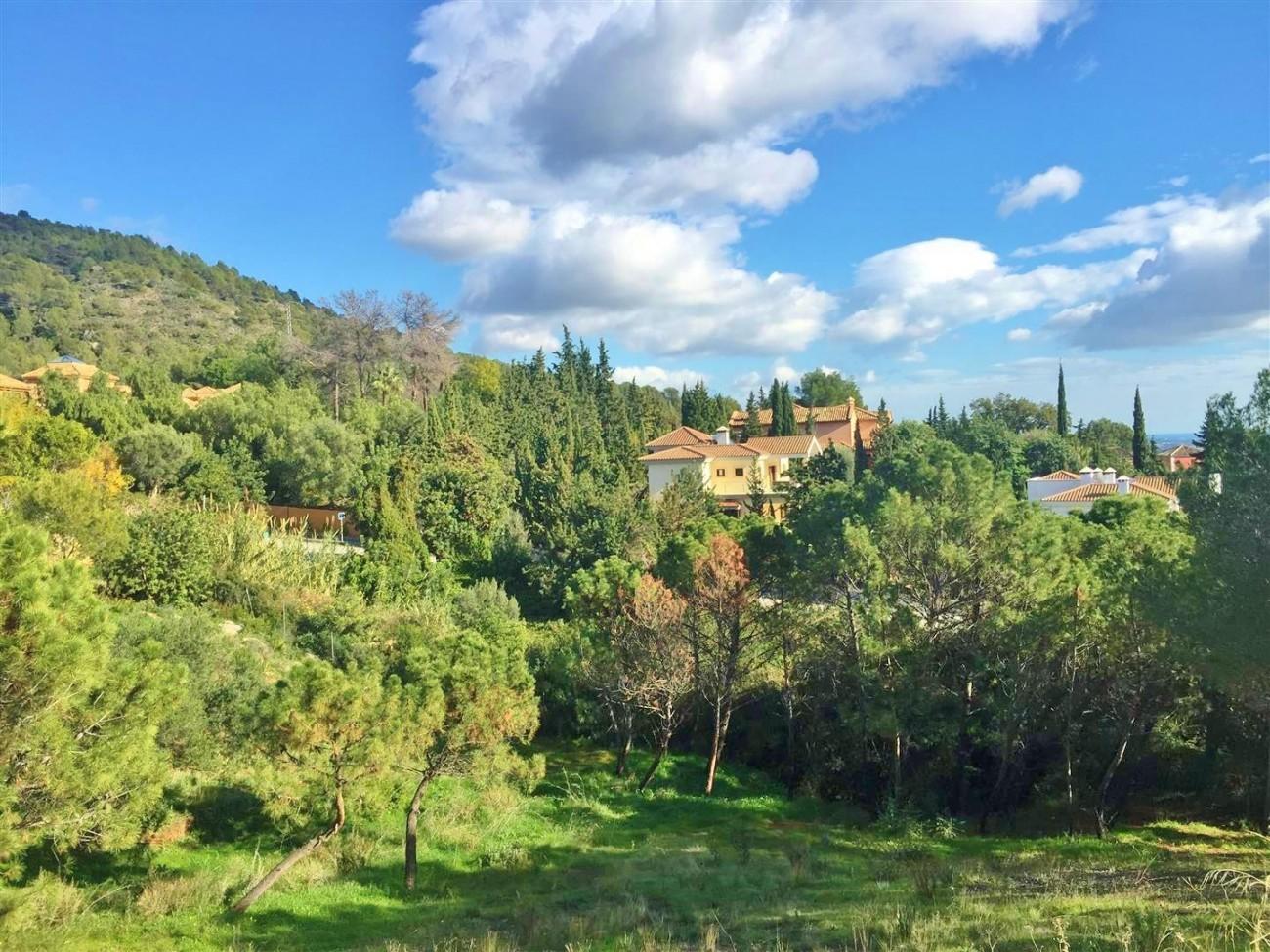 P5185 Plot Cascadas de Camojan Marbella  (12) (Large)
