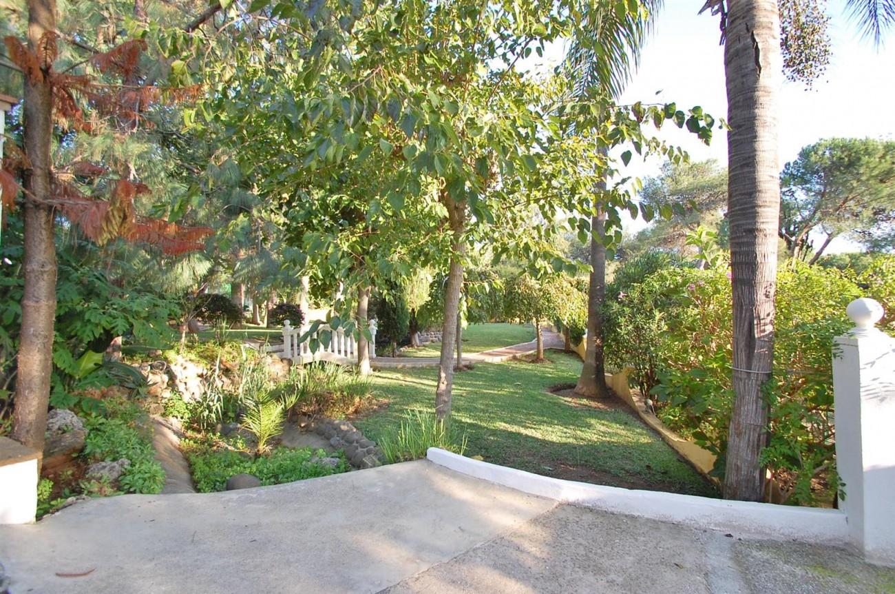 P5264 Plot Elviria East Marbella (3) (Large)