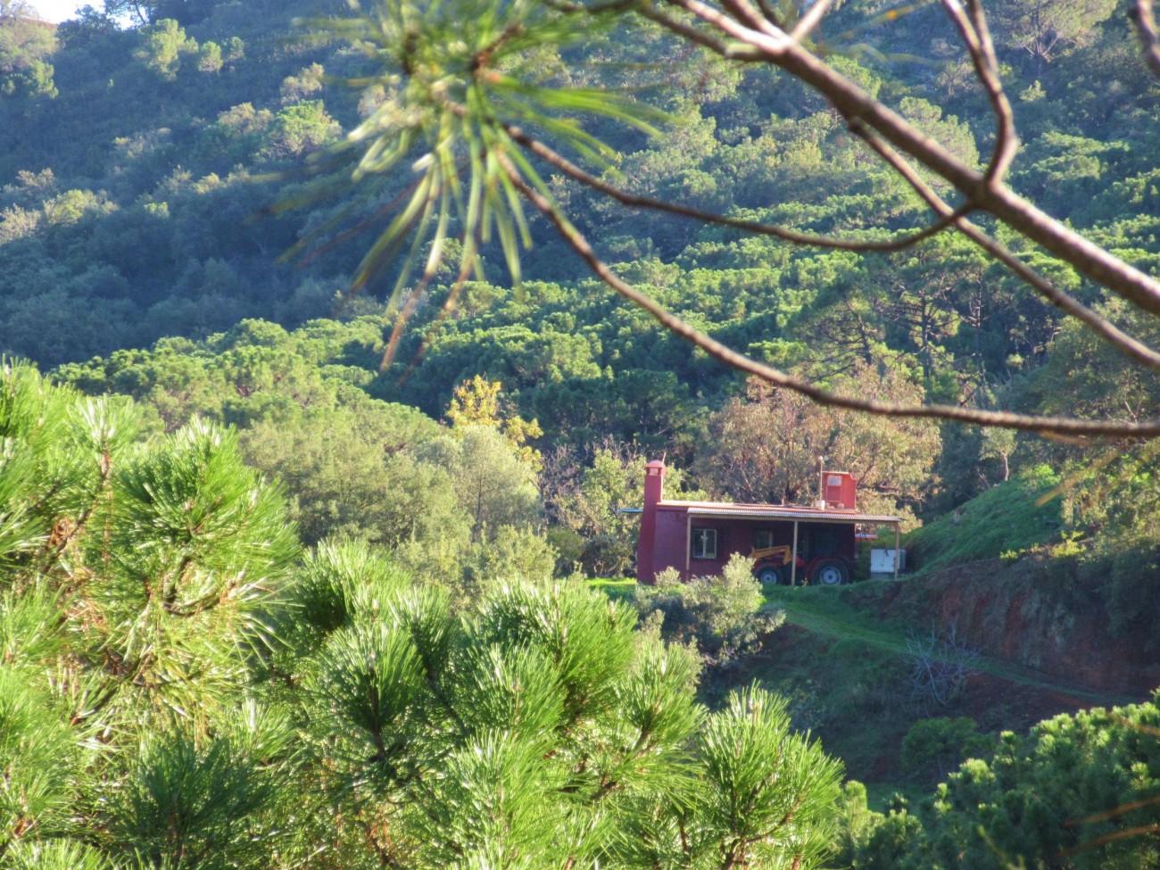 V5348 Villa Estepona 18