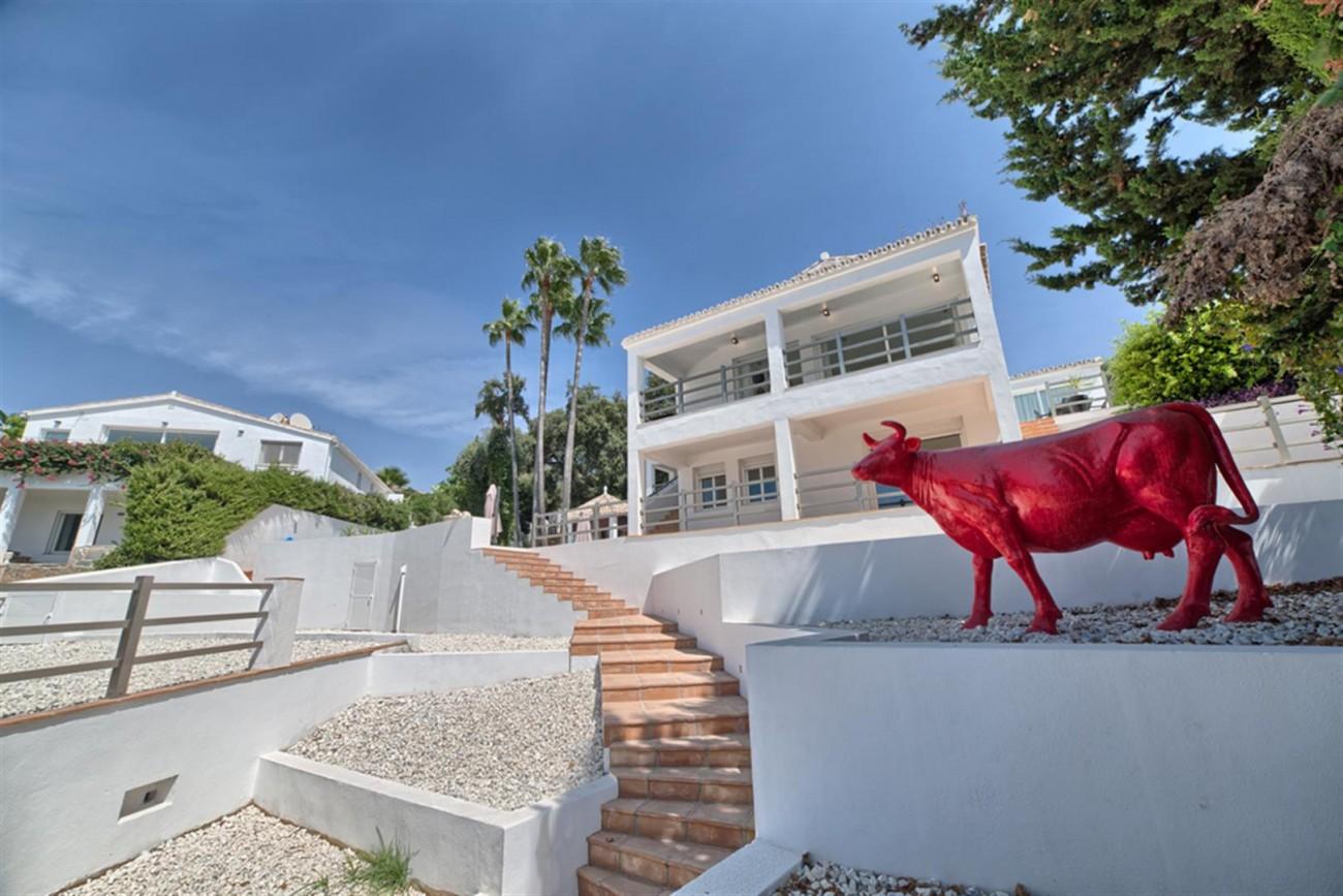 V5463 Excellent villa El Rosario (13) (Large)