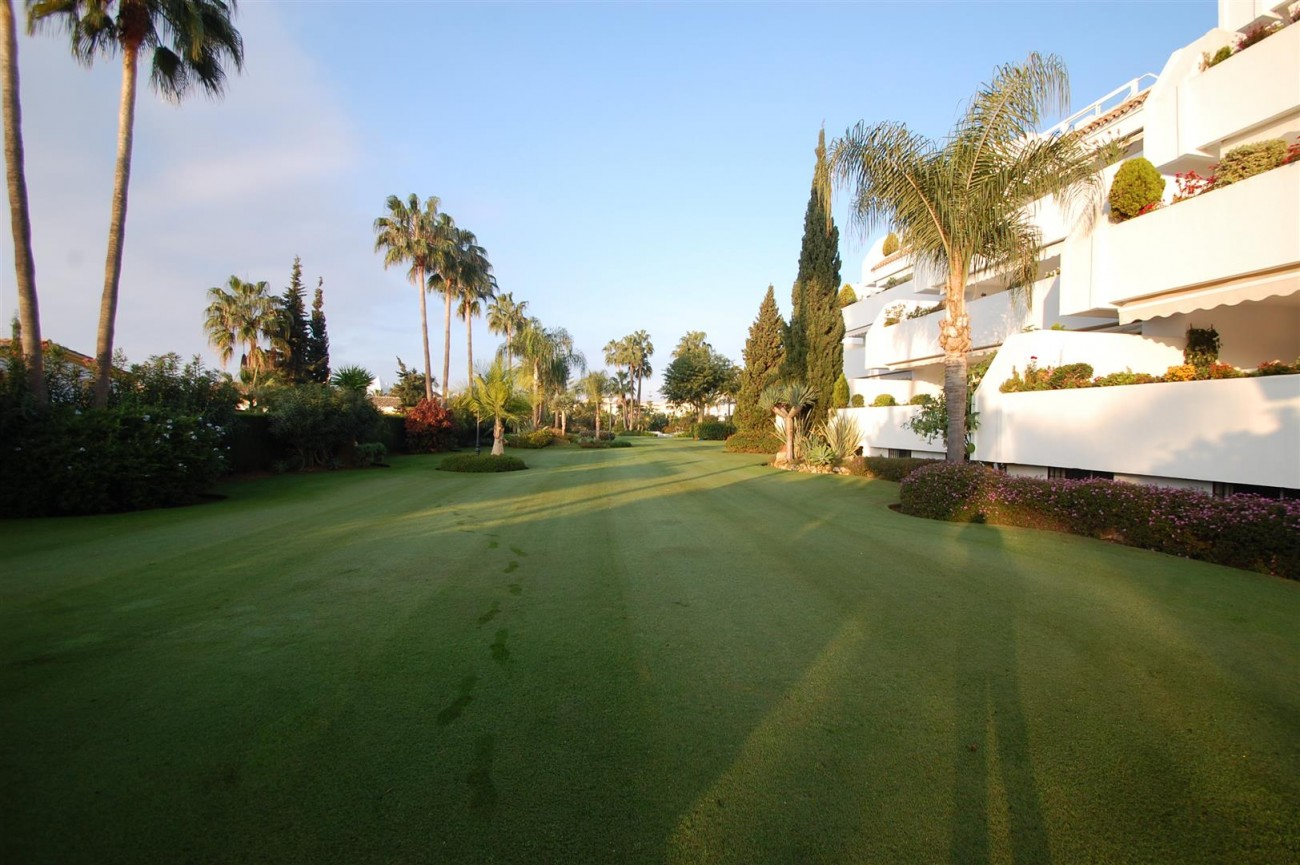 A5504 Beachside apartment Marbella 9 (Large)