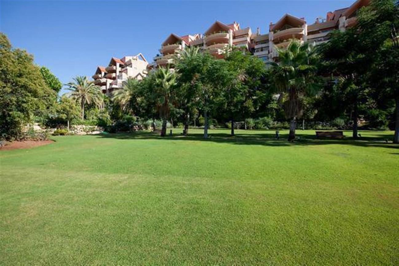A5520 Apartment Nueva Andalucia 9 (Large)