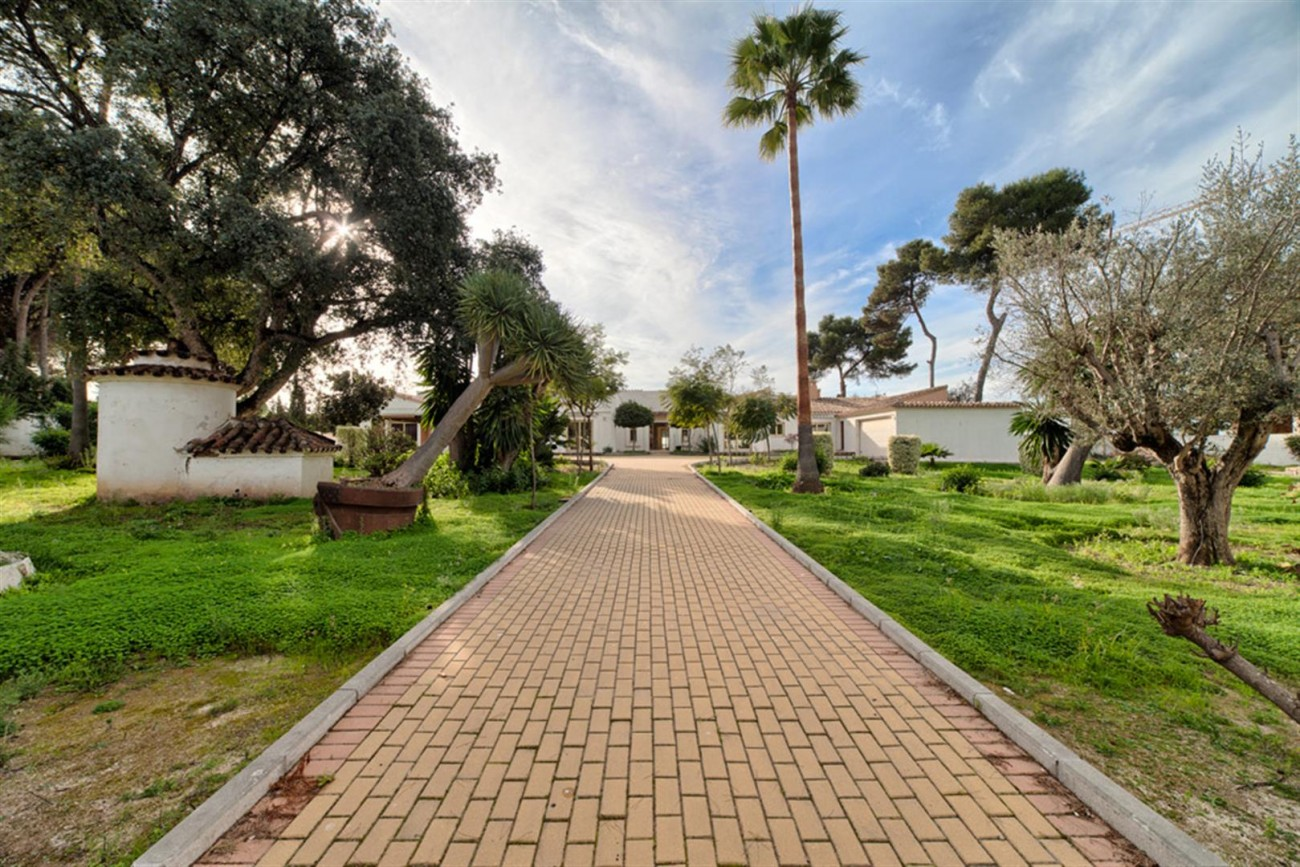 V5541 Frontline beach villa Estepona 4 (Large)