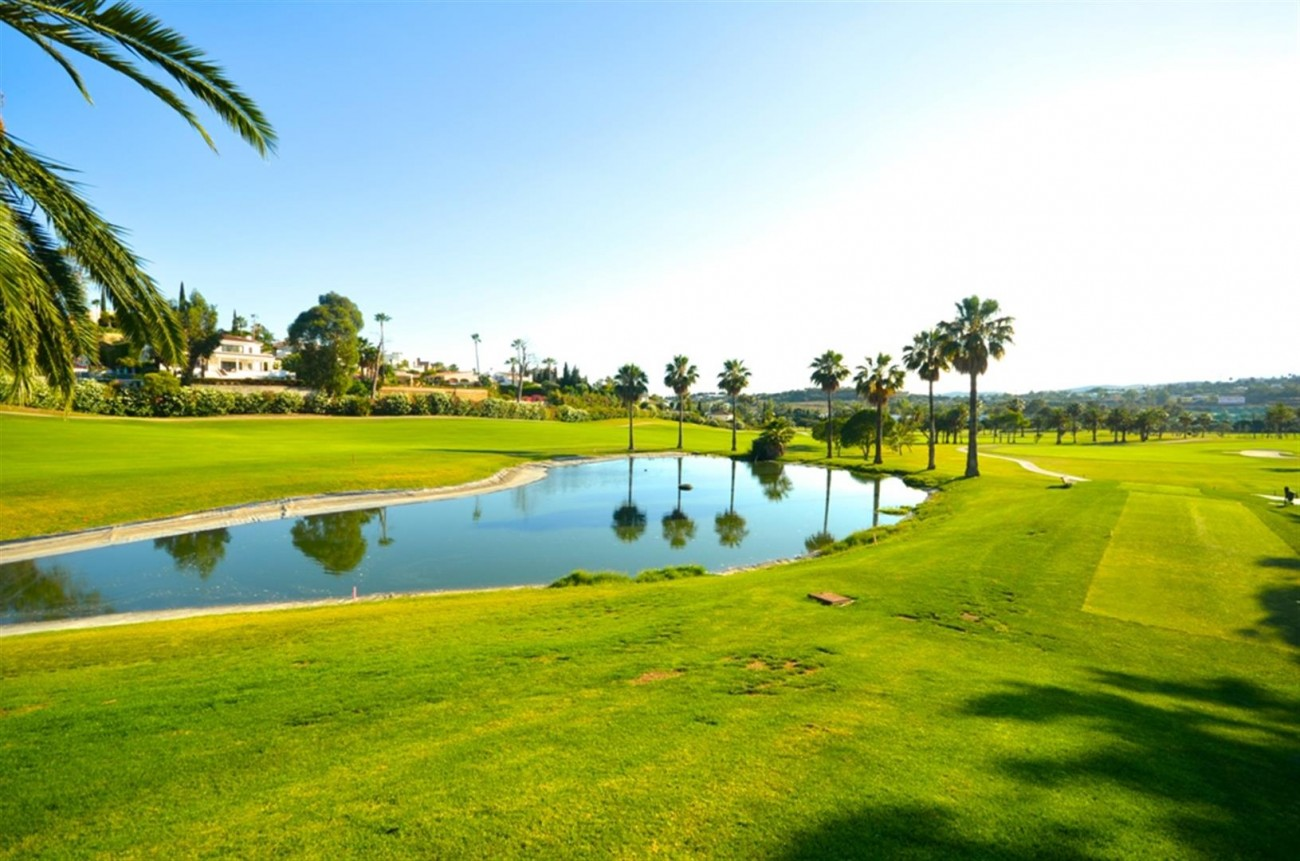 V5548 Luxury villa Nueva Andalucia 12 (Large)