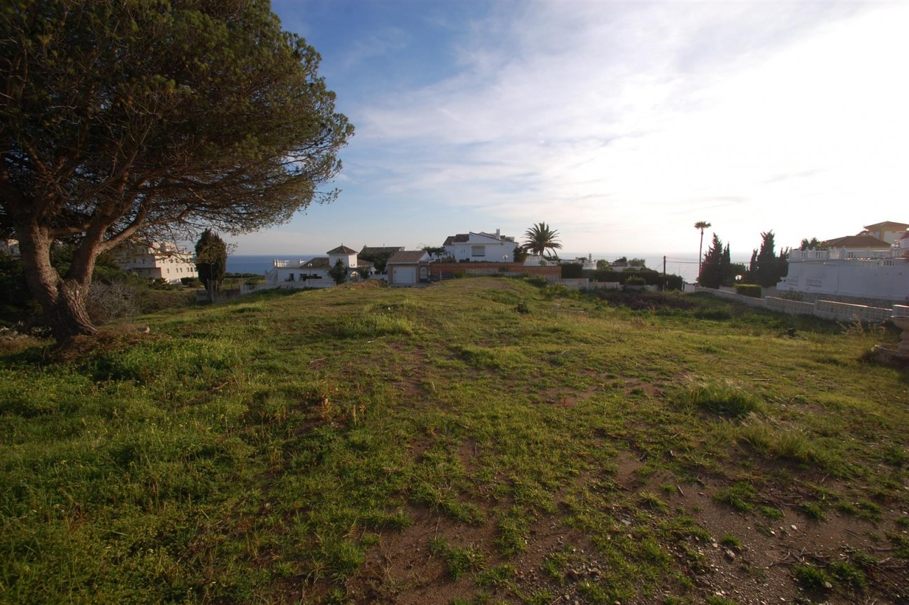 P5559 Plots in Mijas (11) (Large)