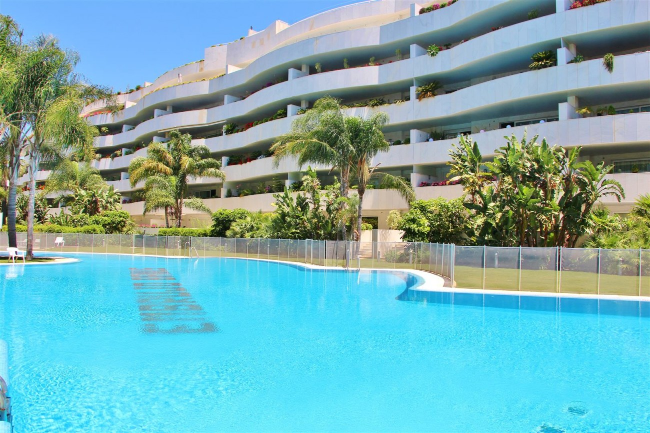 A4218 Sapcious apartment in Puerto Banus (23) (Large)