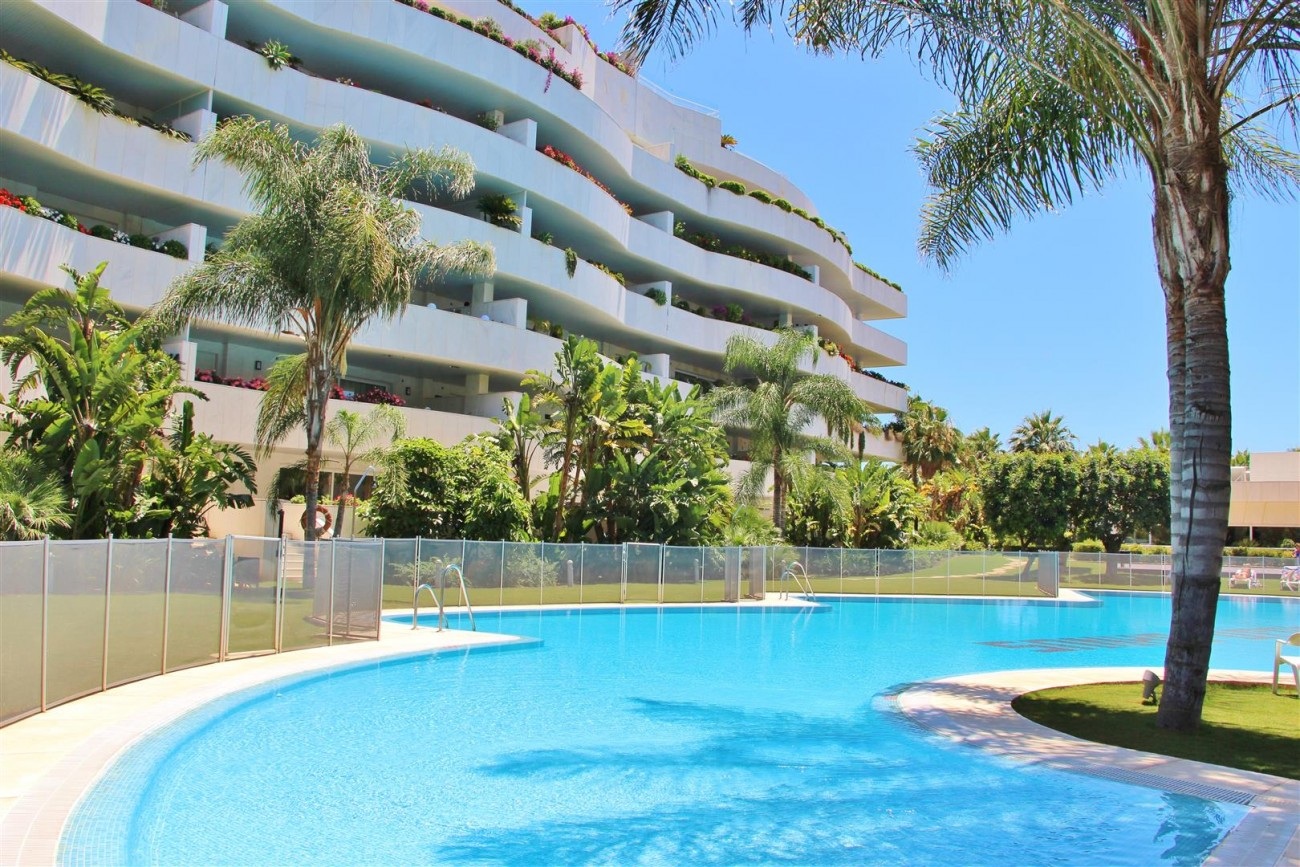 A5597 Spacious apartment in Puerto Banus 9 (Large)