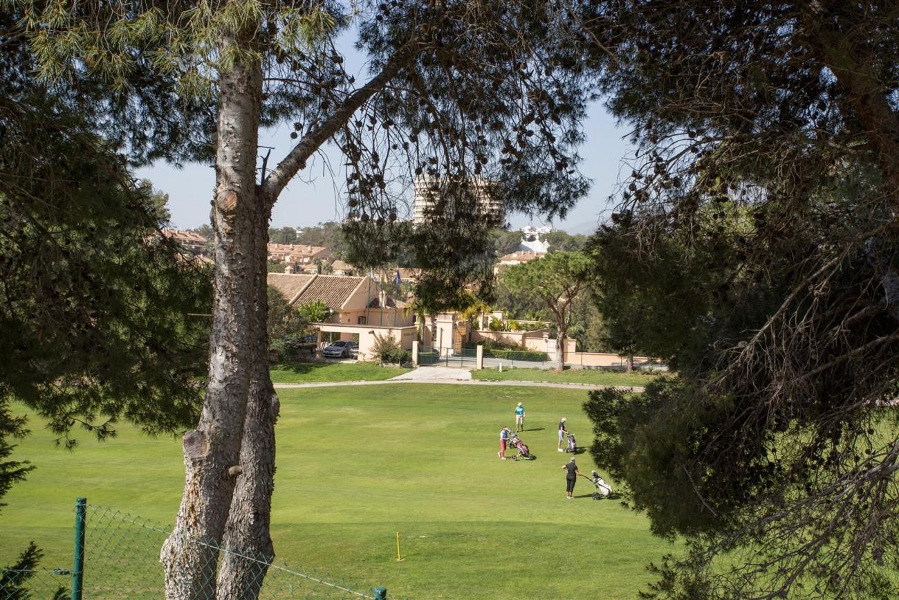 V5606 Luxury frontline golf villa Marbella 10 (Large)