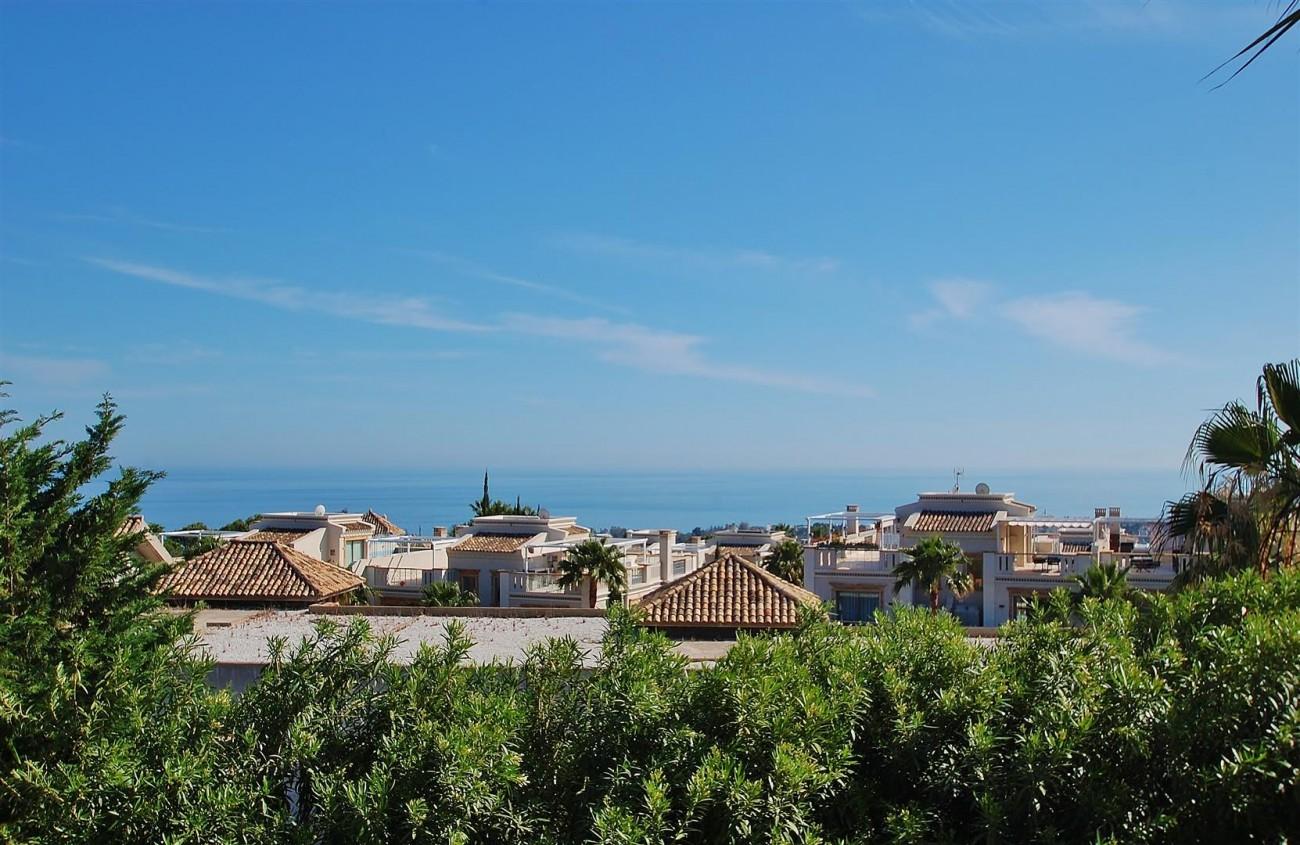 V5609 Luxury Villa Marbella Golden Mile (1) (Large)