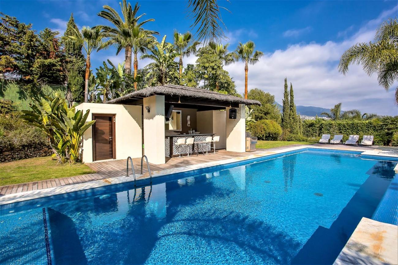 Luxury Mansion for sale Puerto Banus Marbella Spain (4) (Large)