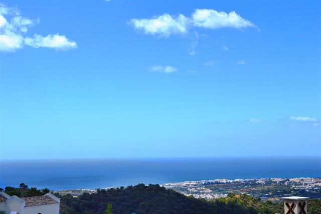 Elegant villa for sale close to Puerto Banus (18) (Large)