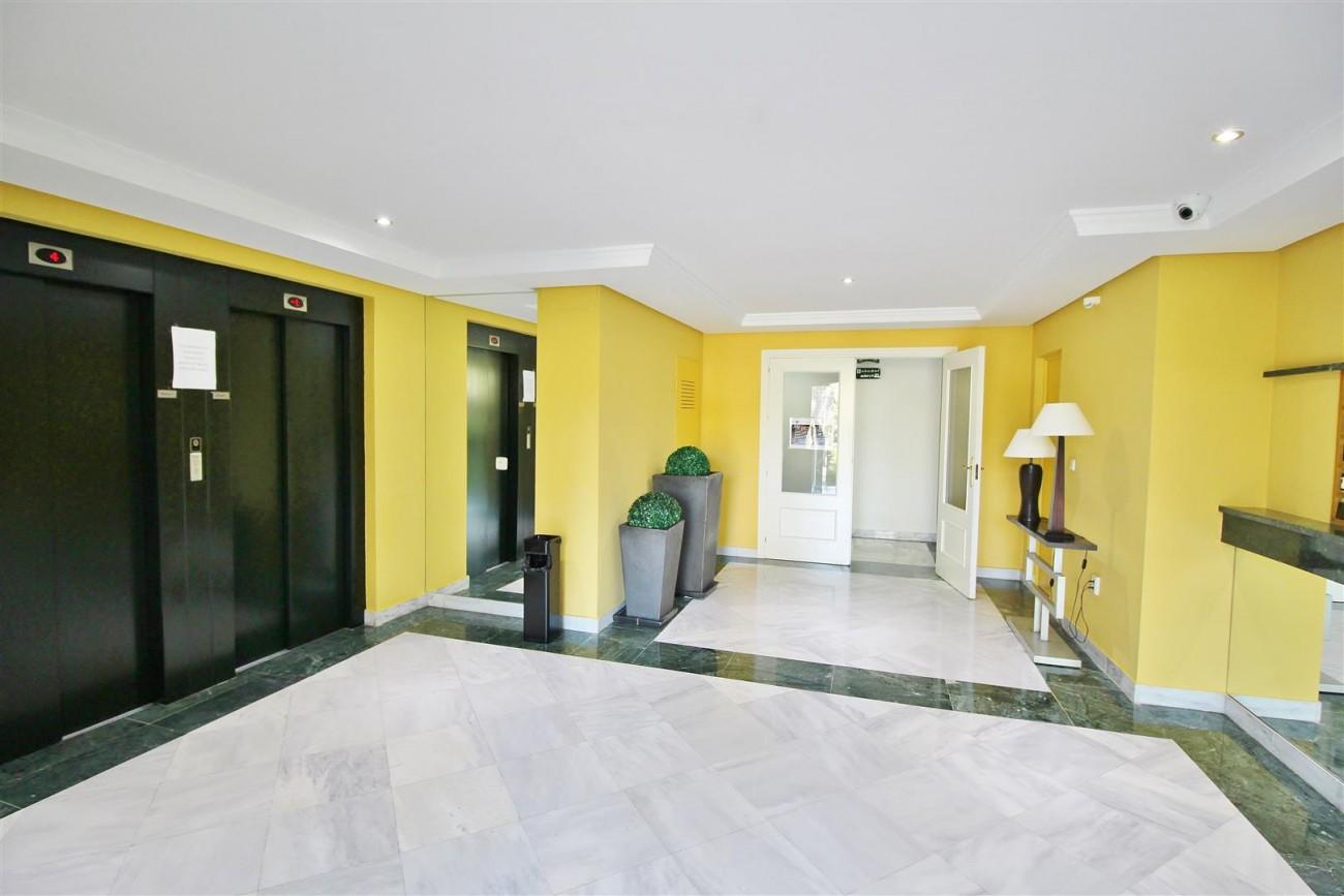 Nice Apartment for sale Nueva Andalucia Marbella Spain (18) (Large)