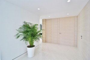 Beachfront luxury Apartments for sale Marbella Spain (8) (Large)
