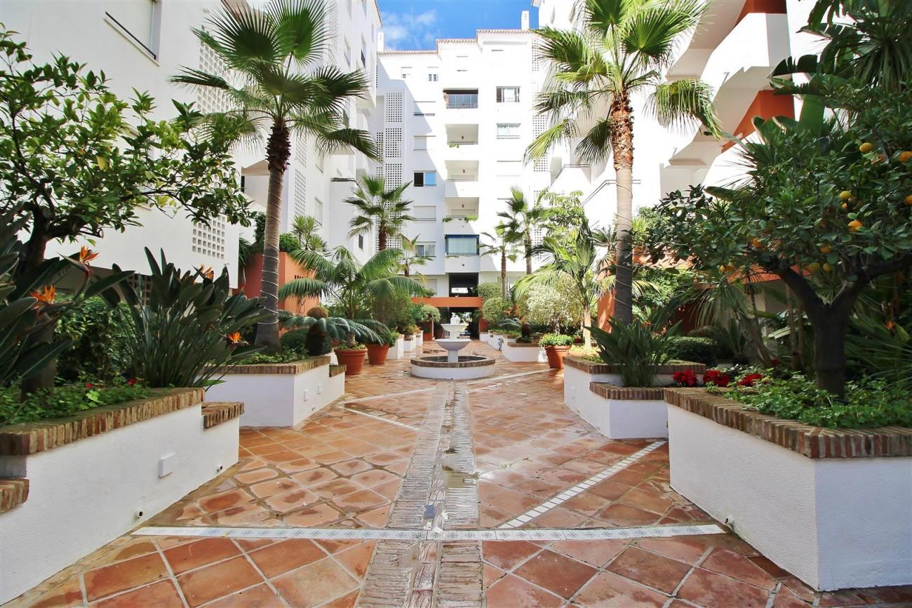 Ground floor Apartment for sale Puerto Banus Marbella Spain (23) (Large)