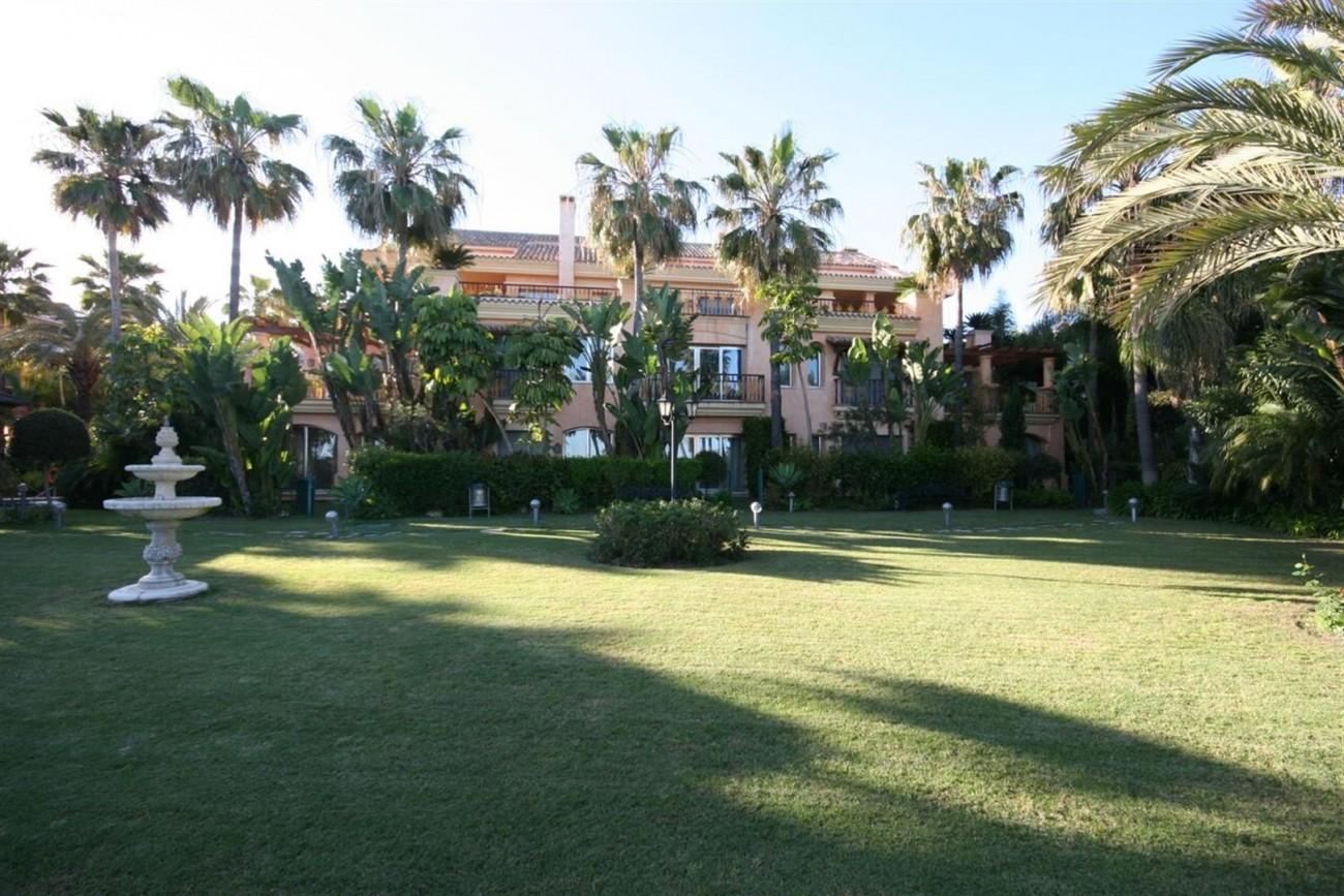 Luxury Beachside Apartment for sale Puerto Banus Marbella Spain (4) (Large)