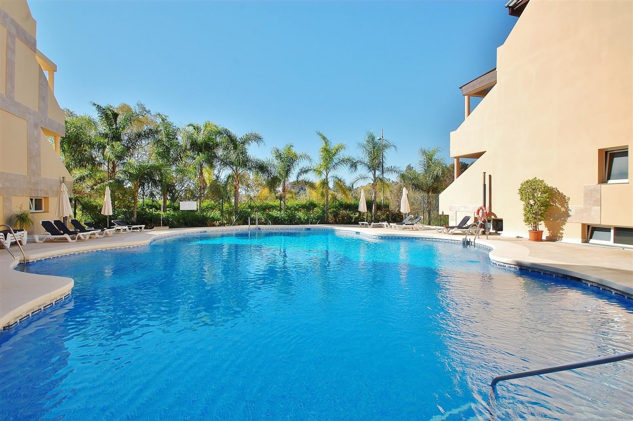 Elegant Apartment for sale Nueva Andalucia Marbella Spain (13) (Large)