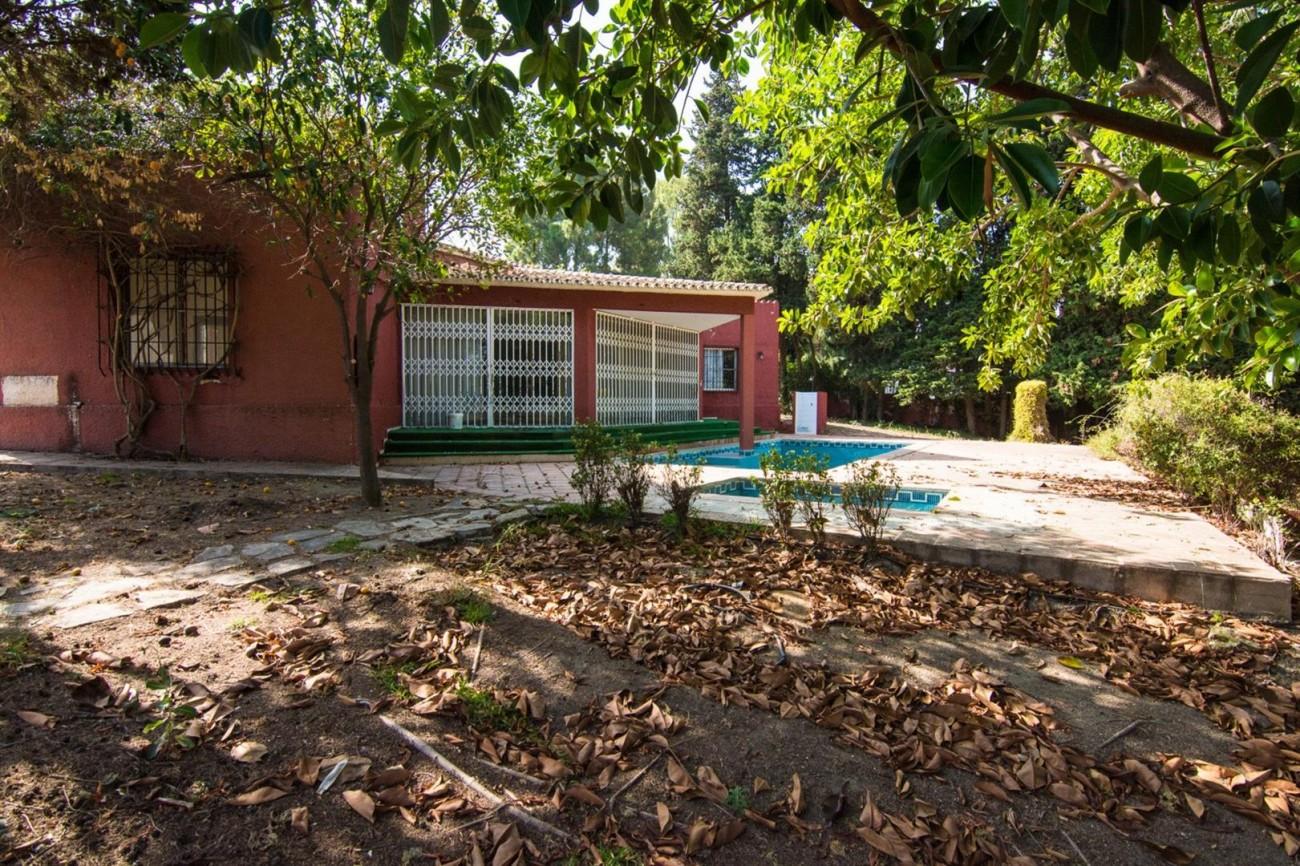 Villa to Renovate Marbella Golden Mile Spain (15) (Large)