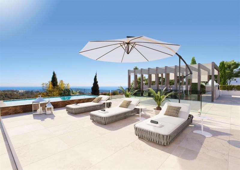 Luxury Contemporary Villa for sale Benahavis Spain (13) (Large)