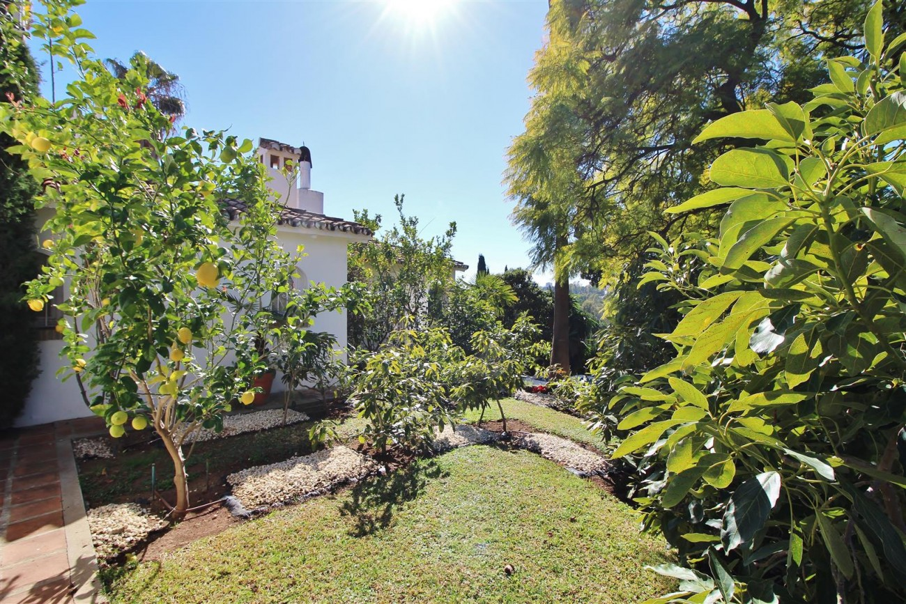 Villa for sale close to Puerto Banus Spain (41) (Large)