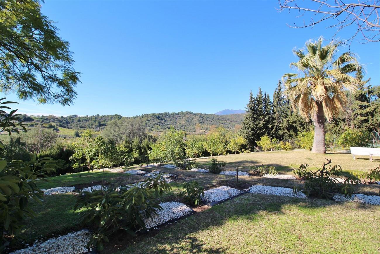 Villa for sale close to Puerto Banus Spain (40) (Large)