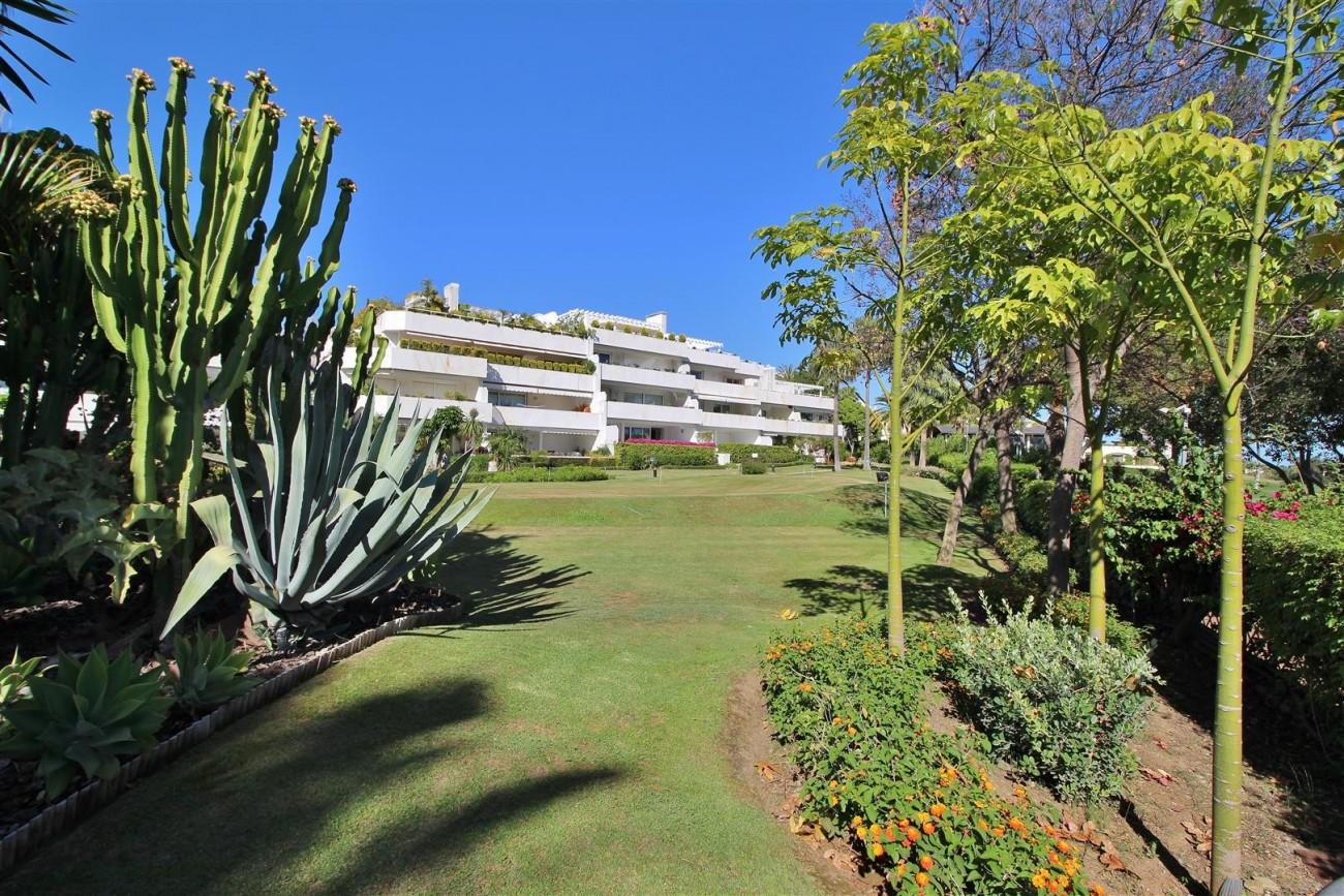 Frontline Golf Luxury Apartment for sale Nueva Andalucia Marbella Spain (2) (Large)