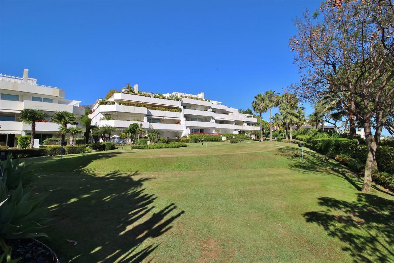 Frontline Golf Luxury Apartment for sale Nueva Andalucia Marbella Spain (3) (Large)