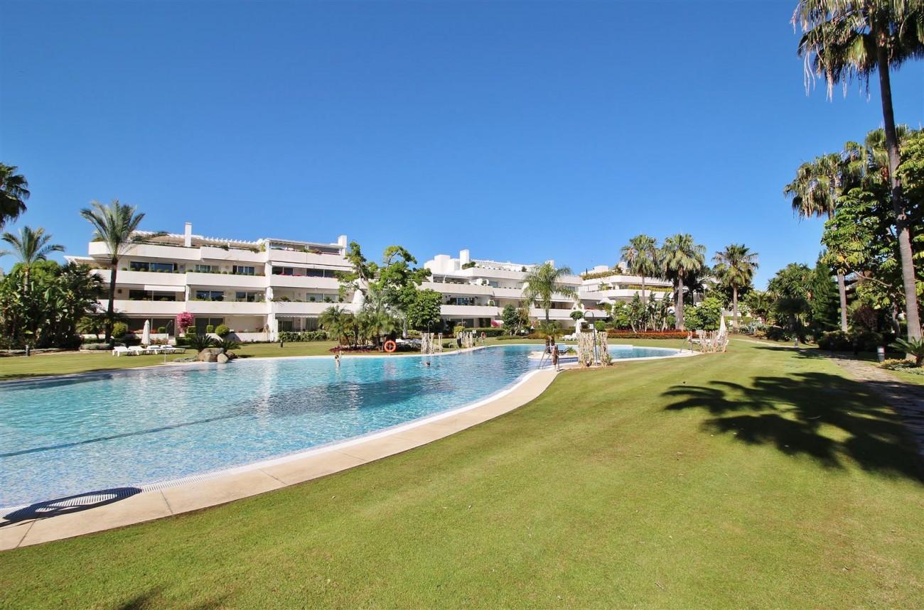 Frontline Golf Luxury Apartment for sale Nueva Andalucia Marbella Spain (39) (Large)