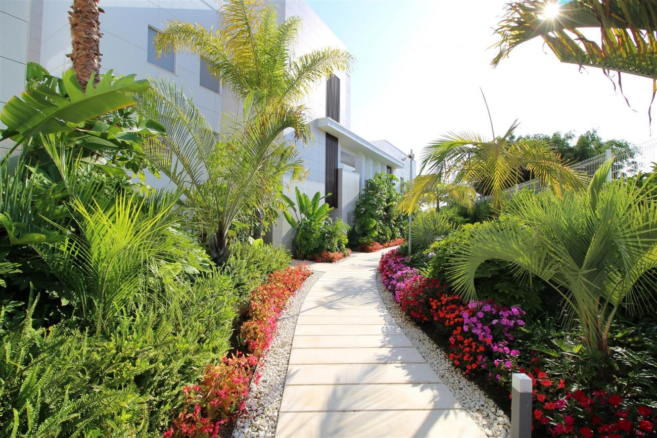 Beachside Penthouse for sale San Pedro de Alcantara Marbella Spain (20) (Large)