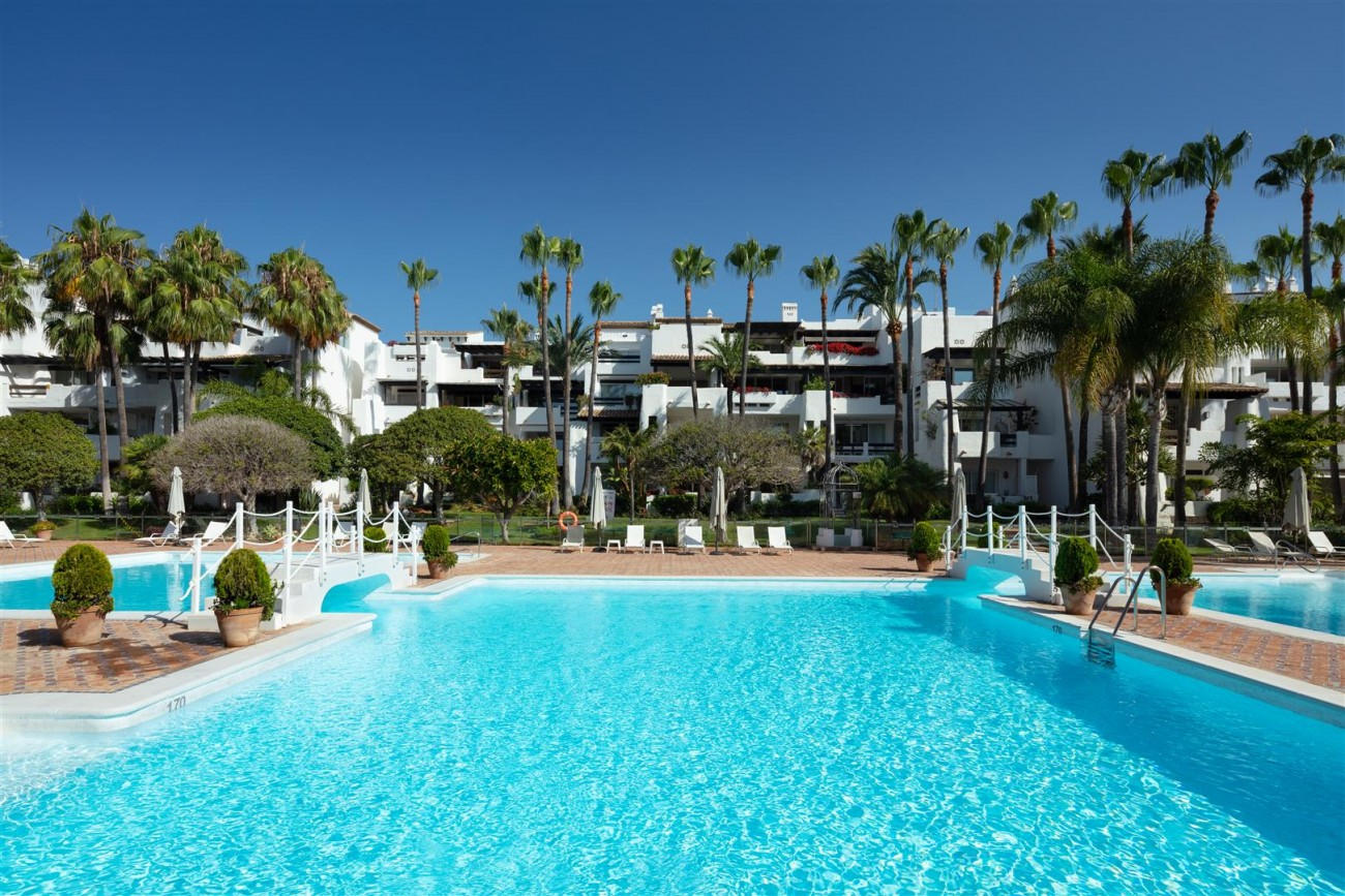 Exclusive Beachside Marbella Golden Mile Apartment (2) (Large)