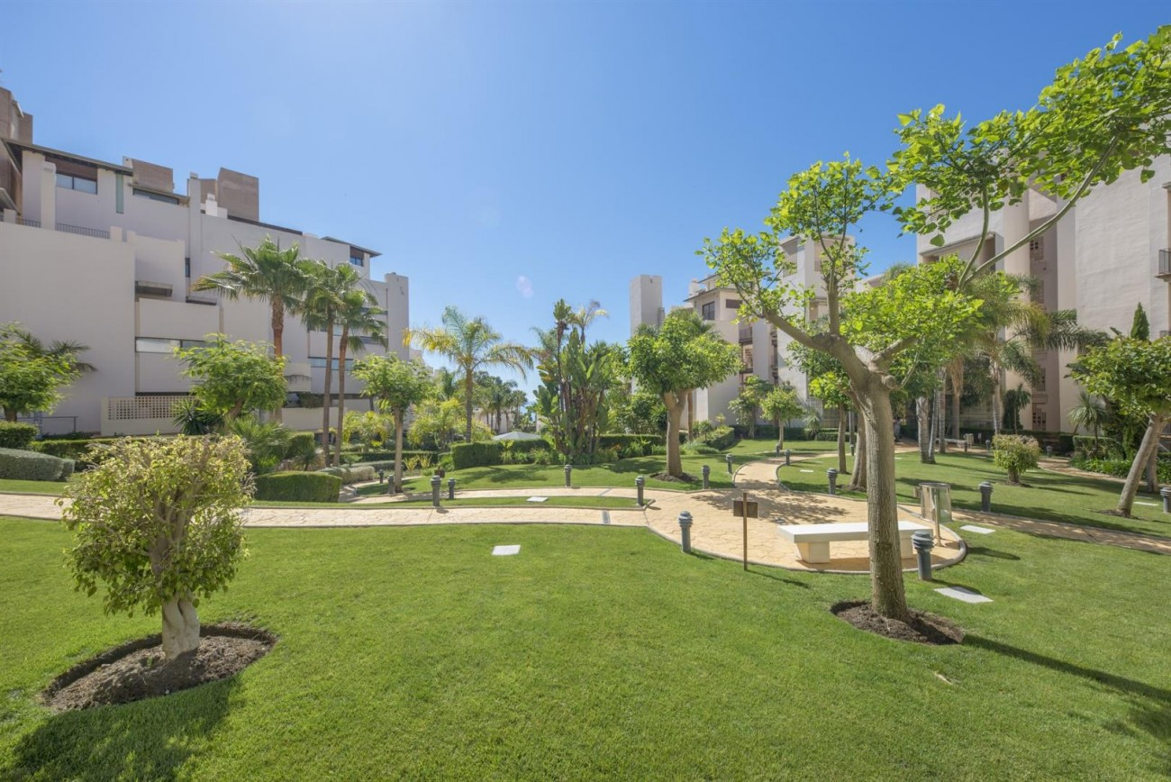 3 Beds Beachfront Penthouse New Golden Mile (31) (Large)
